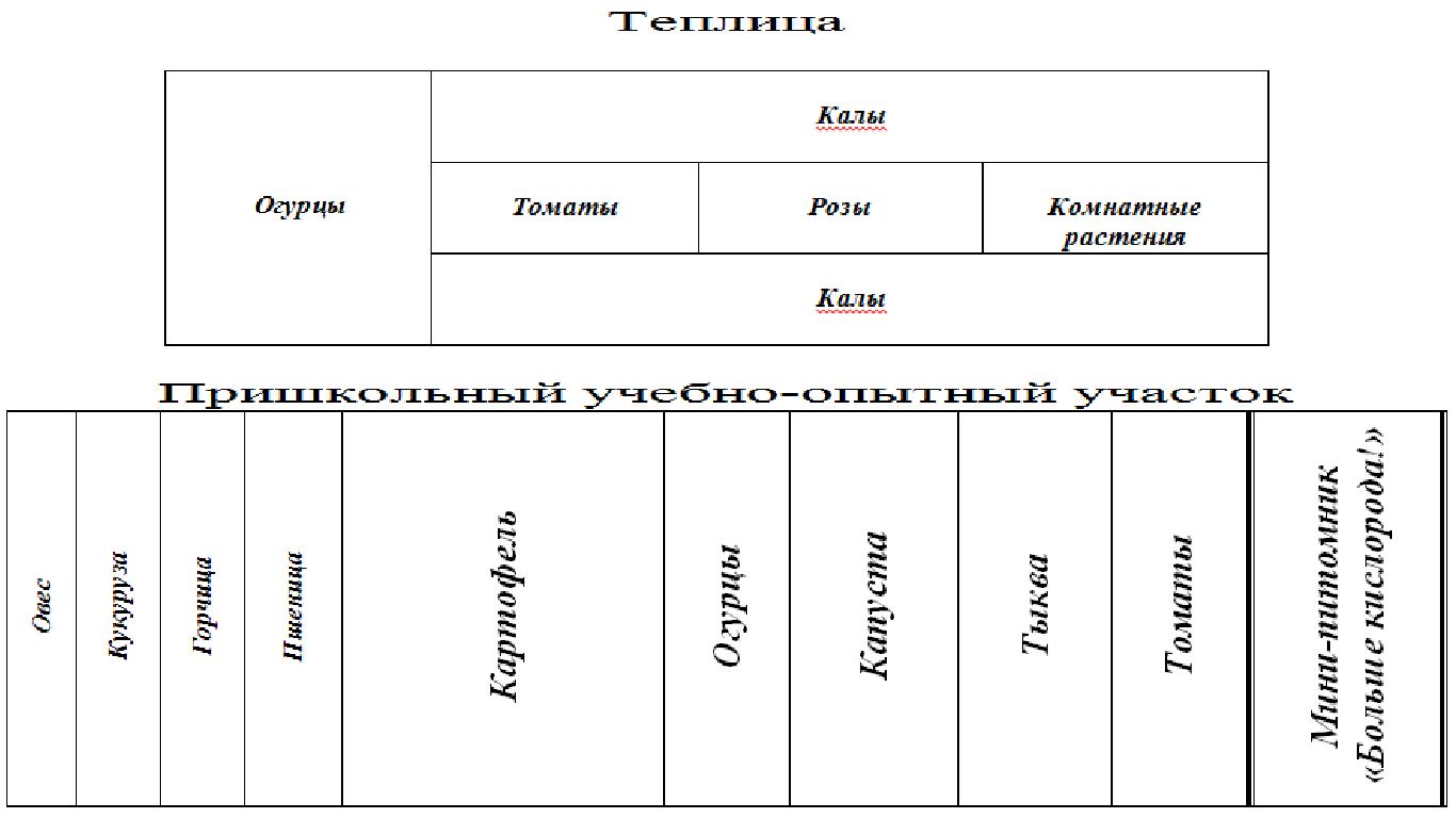 Схема участка школы